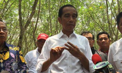 Jokowi soal Penggerebekan Teroris di Sibolga: Tindak Terus Tanpa Henti!